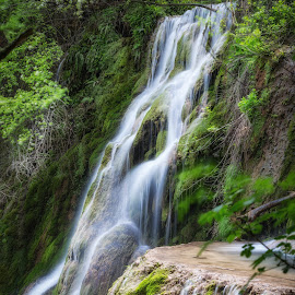 Waterfall by Dobrinovphotography Dobrinov - Landscapes Waterscapes ( water, park, flowing, falling water, green, waterfall, purity, lake, falling, rapid, nature, flowing water, outdoors, day, motion, river, travel locations )