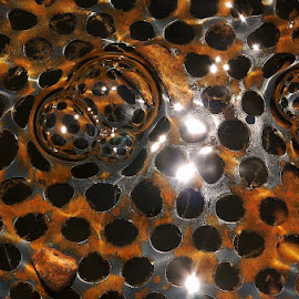 Holy Bubbles by Leigh Martin - Artistic Objects Other Objects ( rust water bubbles light holes )