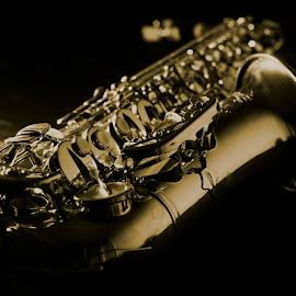Saxophone by Cankat Dönmez - Artistic Objects Musical Instruments