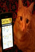 Screenshot of Cat Toy