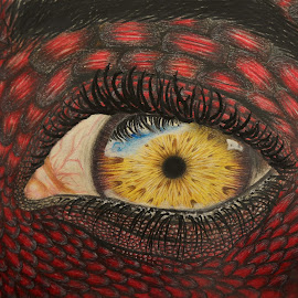 Lizard man's eye by Esma Kurbegović - Drawing All Drawing ( amazing, realistic, colorful, detailed, art, drawing, eye )