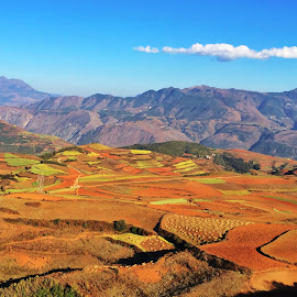 The Red soil  by Wong Sze - Landscapes Travel