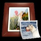 Dell Photo Widget icon
