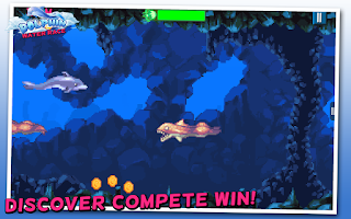 Screenshot of Dolphin Water Race