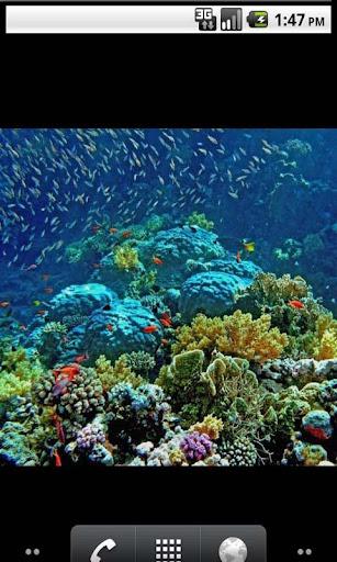 【免費個人化App】Underwater All Photo Gallery-APP點子