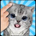 Free Talking Cat Funny Kitten Sound APK for Windows 8