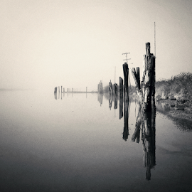 set a drift by Todd Reynolds - Instagram & Mobile Android ( wood, black and white, fog, weather, reflections, grey, river )