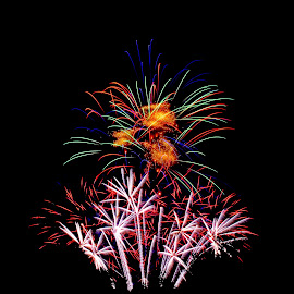 Fireworks Bouquet by Jerry Donovan - Abstract Fire & Fireworks ( id, boise, fireworks, july 4th, ann morrison park )