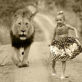 lionkaleybw.jpg