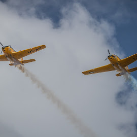 Twins by Ron Meyers - Transportation Airplanes