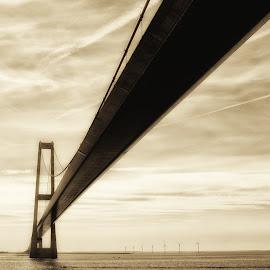 The Oresund Bridge by Gabriela Lupu - Buildings & Architecture Bridges & Suspended Structures ( oresund, copenhagen, denmark, architecture, bridge )