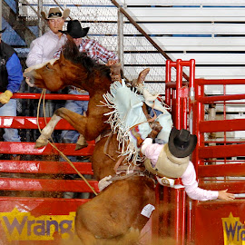 Reride by Amanda Rutherford - Sports & Fitness Rodeo/Bull Riding