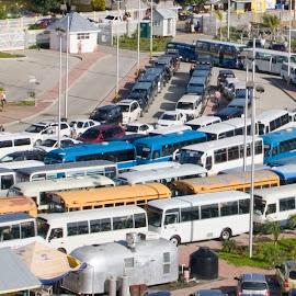 Buses awaiting cruise ship passengers. by Dan Dusek - City,  Street & Park  Street Scenes ( bus, passenger transport, transportation, excursion, street photography,  )