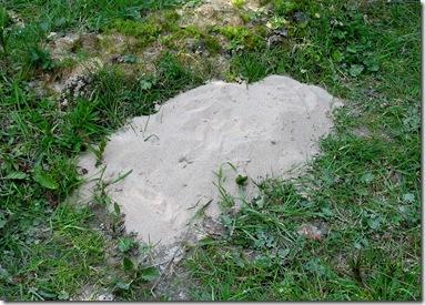 20080416 Metre sand heap 2