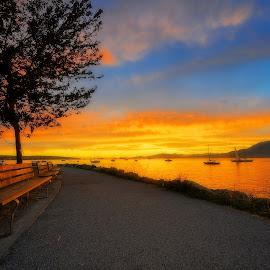 Kits Shore Line by Thomas Born - City,  Street & Park  Vistas ( bench, park, sunset, ocen, vancouver, city )