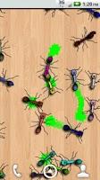 Screenshot of Ants Alive! Wallpaper
