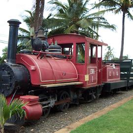 Yesteryear by Raymond Earl Eckert - Transportation Trains ( steam; train; locomotive; hawaii; engine,  )