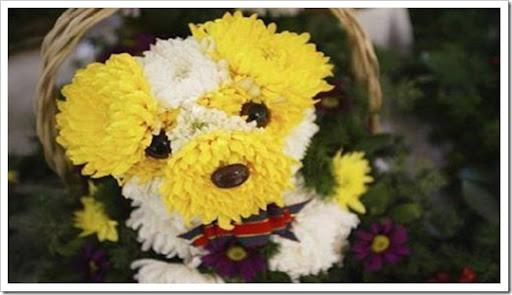 dog-flower-bouquet-2
