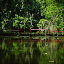 Red Bridge at Magnolia Plantation by Susan Fries - Buildings & Architecture Bridges & Suspended Structures ( red bridge, reflection, magnolia plantation, red, bridge )