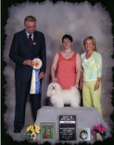 Best Altered in Specialty and Altered Winners Male