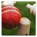 Chauka Cricket Scoring App APK for Bluestacks