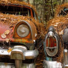 Forgotten  by John Hodge - Transportation Automobiles