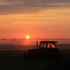 love by Carolane Dupuis - Landscapes Prairies, Meadows & Fields (  )