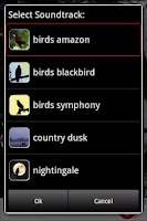 Screenshot of Bird Songs