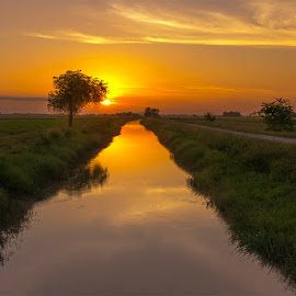 An evening scenery at paddy field inTeroi, Yan, Kedah, Malaysia by Ithni Shaari - Landscapes Sunsets & Sunrises ( water, green field, grass, paddy, trees, landscapes, yellow sky, evening, sun, panoramic, river, burning sky )