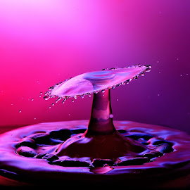 Umbrella Drop by Nirmal Kumar - Abstract Water Drops & Splashes