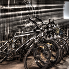 by Allyn Cooper - Transportation Bicycles ( cycles, hdr, pushbikes, bicycle )