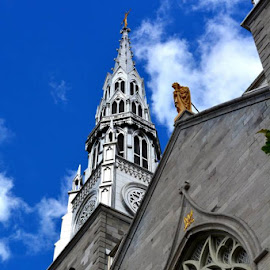 Notre Dame Cathedral by Brandy Muller - Buildings & Architecture Places of Worship ( blue sky, spire, steeple, church, cathedral, worship,  )