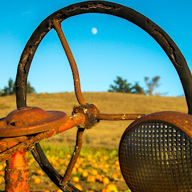 Yesterday's Harvester by Justin Murazzo - Artistic Objects Antiques ( body, old, driving, leaves, spoke, sky, autumn, perspective, dead, light, choose, petaluma, cool, orange, nineteenth, pumpkin, grass, california, vine, tourism, dairy, sunlight, northern, tourist, bay, day, antique, abandoned, decay, yesteryear, moon, wheel, america, states, north, beauty, sun, farm, area, scoop, driver, pick, rust, september, united, green, beautiful, century, past, red, blue, fall, brown, october, patch, spotlight, color, colorful, nature,  )
