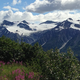 Haines, Alaska by Kerrie Larry Dyck - Landscapes Mountains & Hills ( haines, alaska )