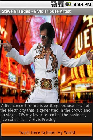Steve Brandes - Elvis Artist