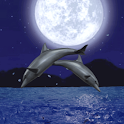 Dolphin Night icon