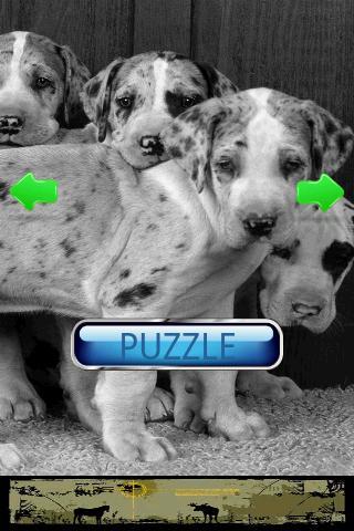 玩休閒App|狗狗拼圖免費|APP試玩