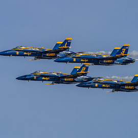 Blue Angel Diamond by Ron Meyers - Transportation Airplanes