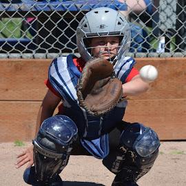 Perfect Catch by Kurt Bailey - Sports & Fitness Baseball (  )