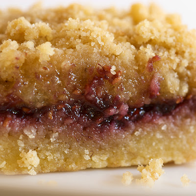Raspberry Hazelnut Crumble Bars