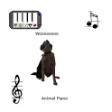Animal Piano icon