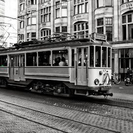 Streetcar Den Haag by Dez Green - Transportation Other ( den haag, black and white, holland, tram, streetcar,  )
