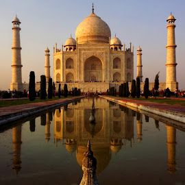 The Tajmahal by Chandradeep Ghosh - Buildings & Architecture Public & Historical