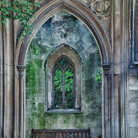 by Sue Niven - Buildings & Architecture Architectural Detail ( uk, bench, window, london, door frame )