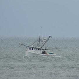 Shrimp boat by Susan Hofer - Transportation Boats