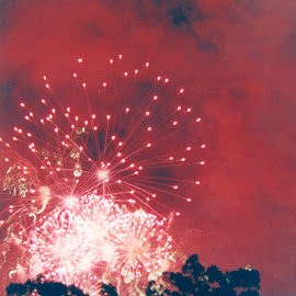 Firerworks by Richard Rabitaille - City,  Street & Park  Amusement Parks ( fireworks, reds whites trees smoke sky,  )