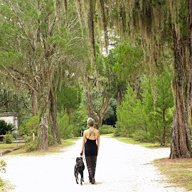 Discovering Bonaventure Secrets by Kristen Beitzel - Novices Only Landscapes ( savannah, walking, cemetery, trees, dog )