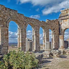 Volubilis by David Verlic - Buildings & Architecture Public & Historical ( arches, ruins, volubilis, architecture, morrocco, roman )