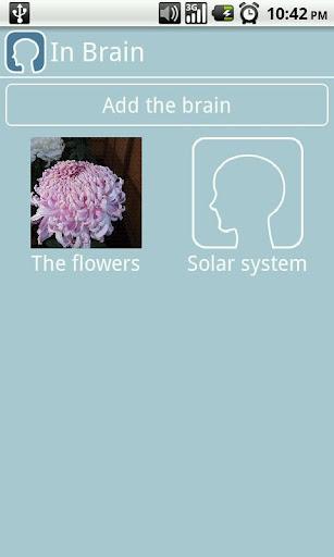 In Brain Image memorization