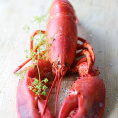 Lobster salad with tarragon